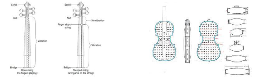 violin explained