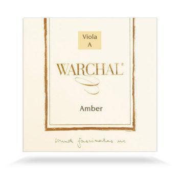 Amber Viola